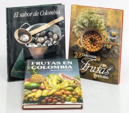 19  -  [Gastronomía colombiana: 2 vol.]