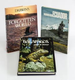 20  -  [Ecuador: 3 libros ilustrados]